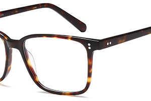 Brooklyn D118 Gents Acetate Frame