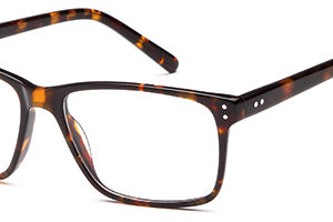 Brooklyn D61 Gents Acetate Frame