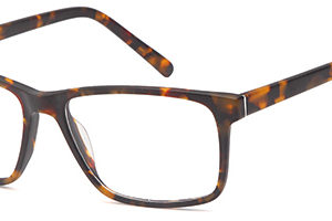 Brooklyn D76 Gents Acetate Frame